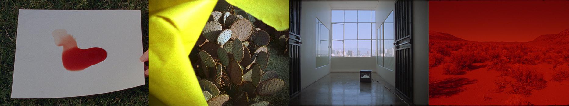 Landscape Plus with Laida Lertxundi