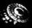 Laitala_Retrospectroscope_1